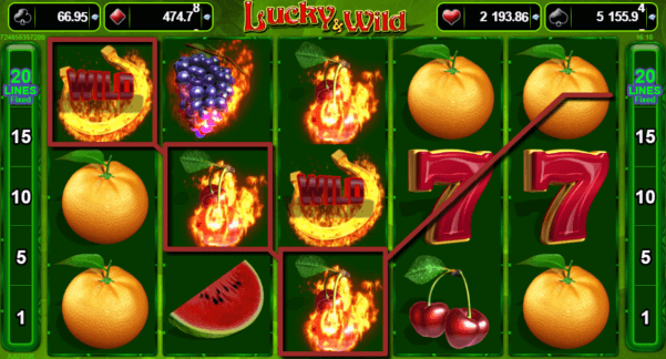 Lucky Wild - Jocuri Aparate Pacanele